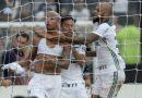 Palmeiras bate o Vasco e conquista o 10° título do Brasileirão